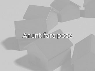 Vila Ion Mihalache Parcul Copilului